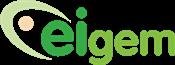 Eigem logo